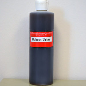 16 oz bottle of Bobcat Urine.
