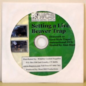 Setting a Live Beaver trap DVD