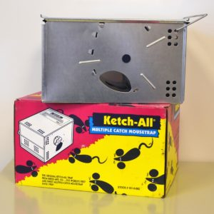 ketch all multiple mouse trap.