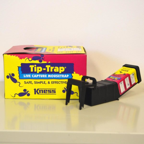 tip-trap-kness